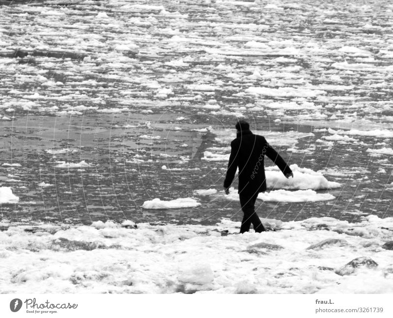 ice cream cream Trip Winter Human being Man Adults 1 45 - 60 years Nature Water Bad weather Ice Frost River bank Hamburg Jacket Black-haired Curl Going Cold
