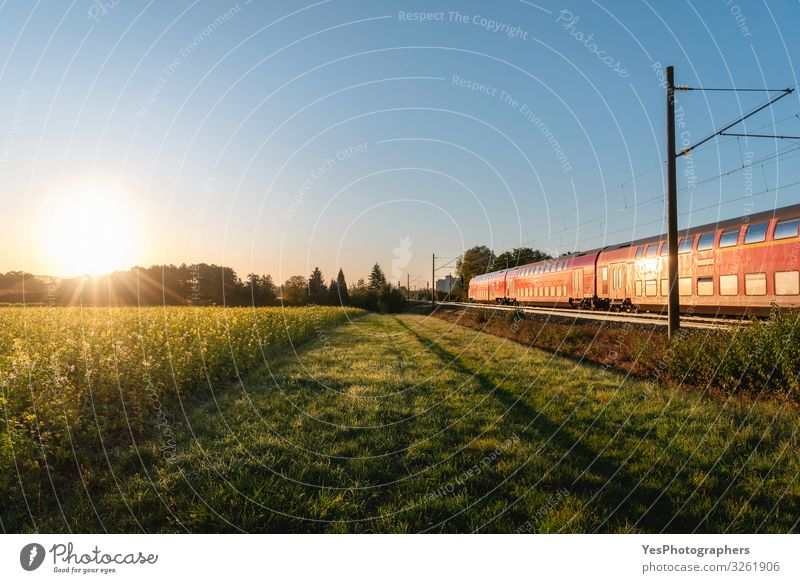 Passenger train and rapeseed field. Spring landscape at sunrise Vacation & Travel Environment Nature Sunrise Sunset Summer Transport Public transit