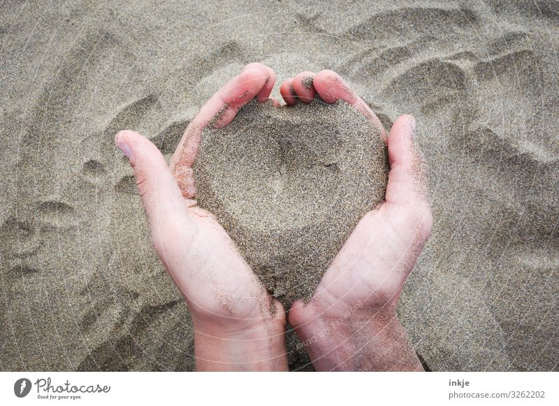 sand heart Lifestyle Senses Relaxation Calm Leisure and hobbies Playing Vacation & Travel Beach Hand Palm of the hand 1 Human being Sand Heart To hold on Simple
