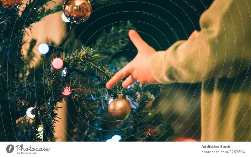 Boy decorating Christmas tree in evening boy christmas fireplace living room hang bauble traditional home celebration kid child little merry holiday xmas