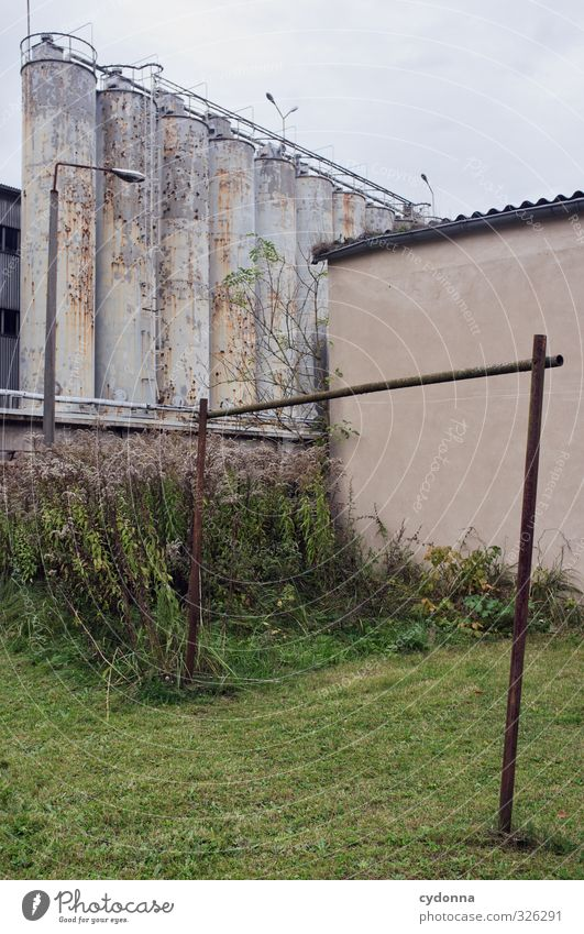 City Loneliness Calm Wall (building) Sadness Autumn Meadow Architecture Wall (barrier) Gloomy Esthetic Change Transience Break Factory Past