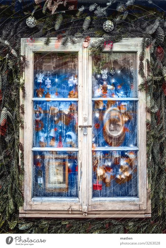 Merry Christmas Window Glittering Kitsch Blue Brown Green Red White Christmas & Advent Fir branch Adorned Wooden window Christmas decoration Cone Exterior shot