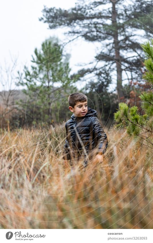 Cute little boy in the forest on a foggy day Lifestyle Beautiful Relaxation Vacation & Travel Winter Mountain Hiking Child Human being Masculine Baby Toddler