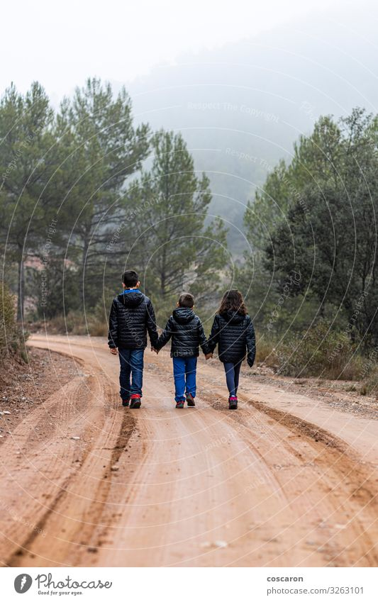 Three children holding hands on a foggy road Child Human being Vacation & Travel Nature Youth (Young adults) Green Landscape Tree Clouds Leaf Forest Winter
