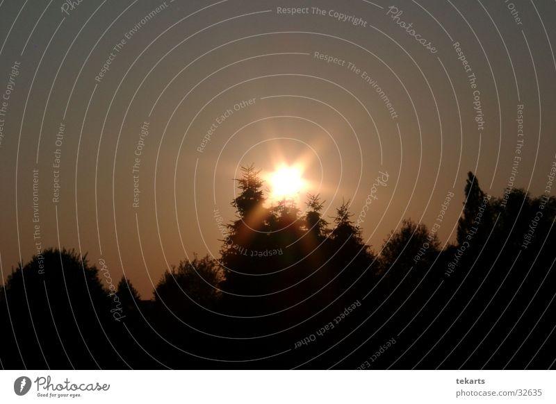 Sun Black Stars Star (Symbol)