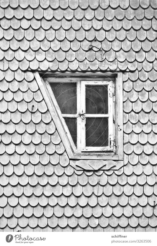 House (Residential Structure) Car Window Exceptional Gray Flat (apartment) Uniqueness Corner Roof Tilt Living room Window pane Problem solving Rent Roofing tile