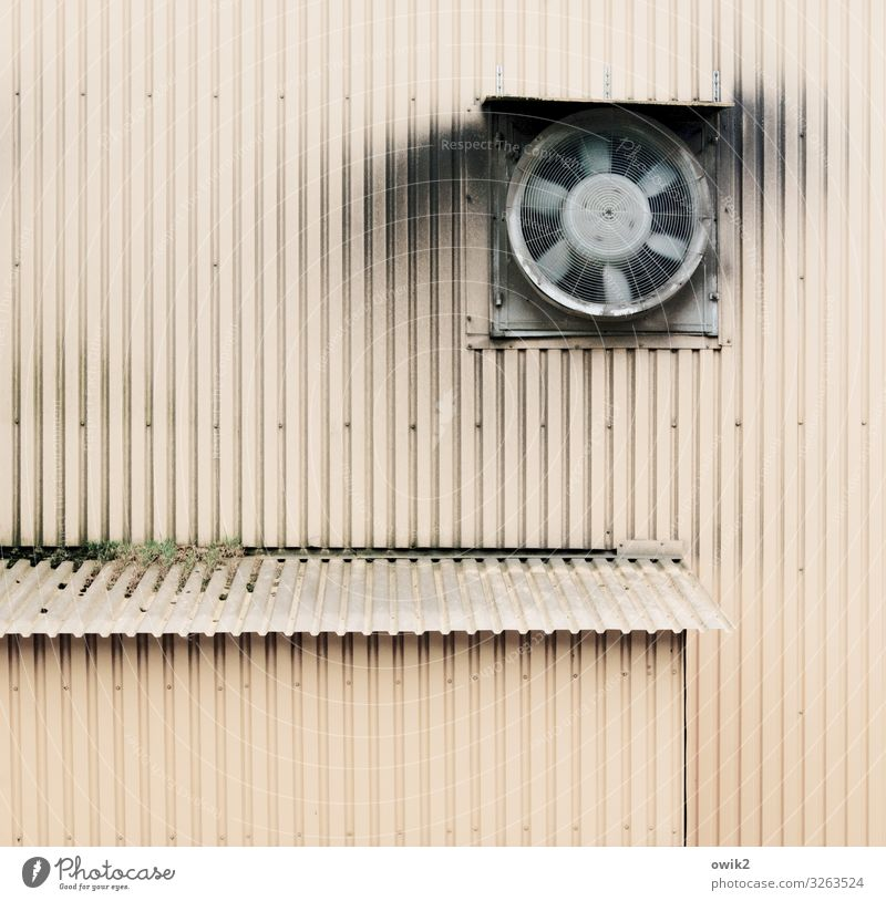 puff paddle Technology Warehouse Fan Ventilation Air supply Tin sheet metal Wall (building) Metal Movement Rotate Dirty Simple Above Trashy Patient Diligent