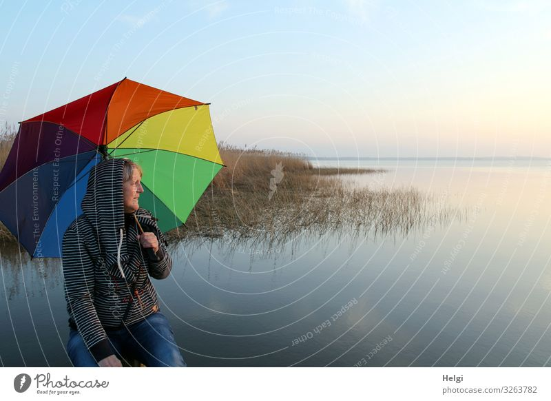 Woman sitting with a colorful umbrella in the evening sun at the lake Human being Feminine Adults Senior citizen 1 45 - 60 years Environment Nature Landscape