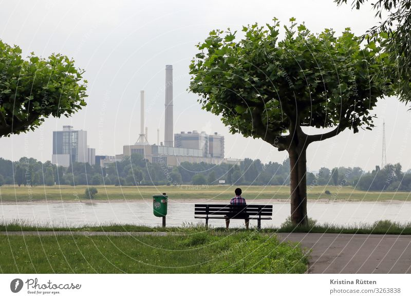 power plant Factory Industry Energy industry Human being Man Adults Environment Nature Landscape Tree River bank Duesseldorf Outskirts Building Chimney Sit