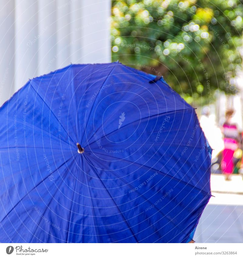Blue Warmth Cold Esthetic Beautiful weather Warm-heartedness Climate Help Protection Dry Positive Sunshade Umbrellas & Shades Cooling Useful Shielded
