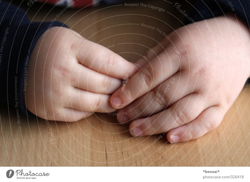 shy Human being Child Toddler Boy (child) Hand Fingers 1 1 - 3 years Touch To hold on Fresh Small Contentment Relaxation Infancy Shame Innocent fingernails Hide