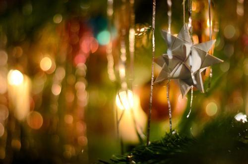 Moravian star Christmas & Advent Illuminate Glittering Star (Symbol) Paper paper star Christmas decoration Christmas fairy lights Christmas tree Fir branch