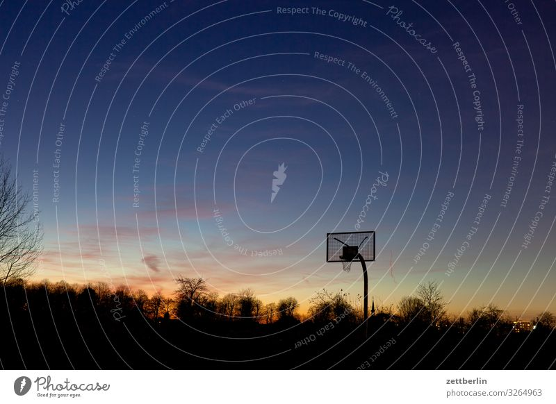 basketball Ball sports Basketball Basketball basket Deserted Playing Playing field Copy Space Evening Dark Twilight Sky Heaven Horizon Berlin steglitz Sports