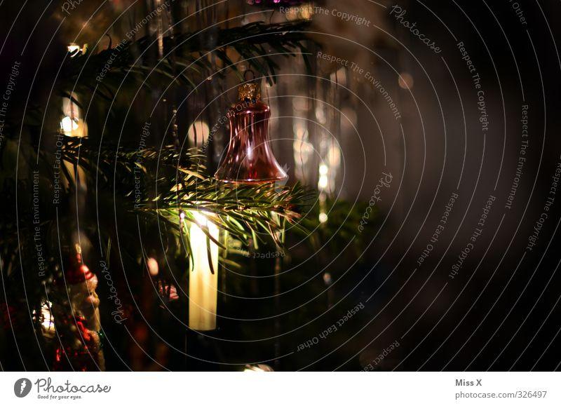 Christmas & Advent Dark Illuminate Candle Christmas tree Christmas decoration Candlelight Fir branch Tinsel Christmas fairy lights Candlelit ambience