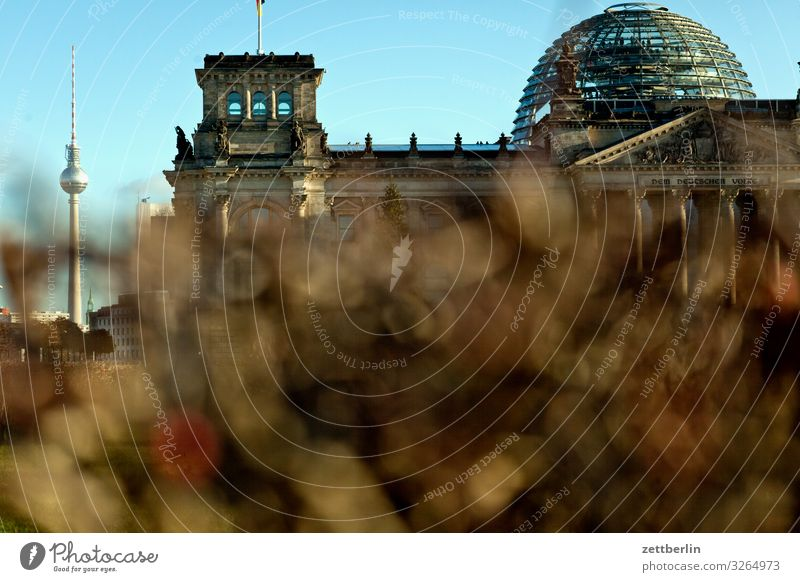 Television Tower and Bundestag Architecture Berlin Reichstag Germany Capital city Federal Chancellery Parliament Government Seat of government Government Palace