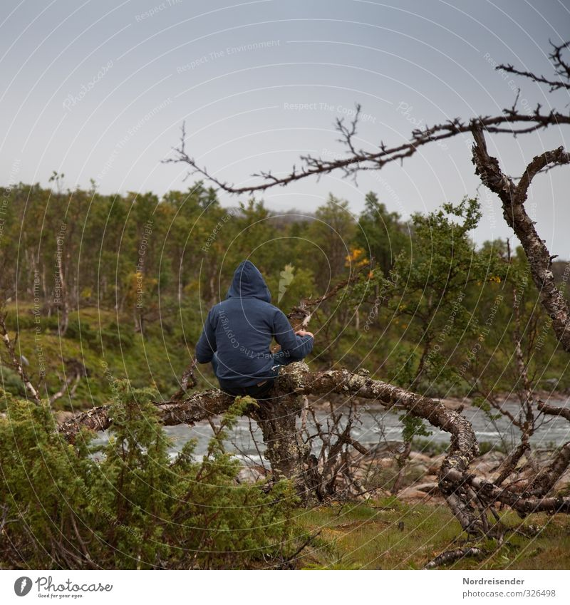 Human being Nature Man Tree Relaxation Loneliness Landscape Calm Forest Adults Dark Life Lanes & trails Think Weather Sit