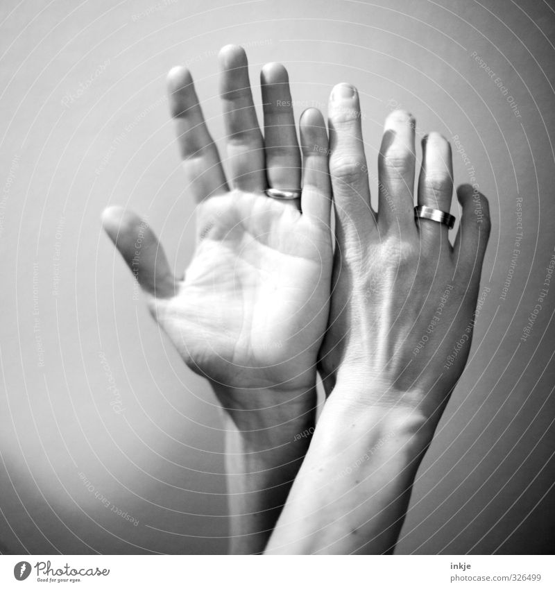 which other photographers found strange: motif Feminine Hand Fingers Women`s hand 1 Human being Ring Wedding band Communicate Make Exceptional Emotions 2