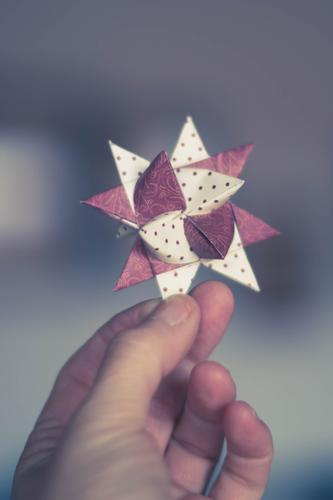 Holding a star in your hands Human being Hand 1 Violet White Christmas & Advent Star (Symbol) Handicraft Anticipation Christmas star Decoration Joy To hold on