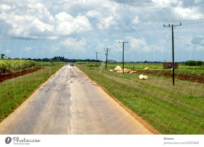 Sky Nature Blue Green Landscape Clouds Loneliness Calm Street Gray Car Free Field Empty Individual Agriculture