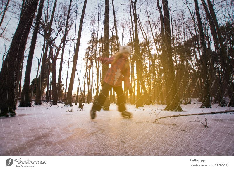 Human being Child Tree Joy Girl Winter Forest Life Feminine Snow Sports Playing Leisure and hobbies Body Infancy Trip