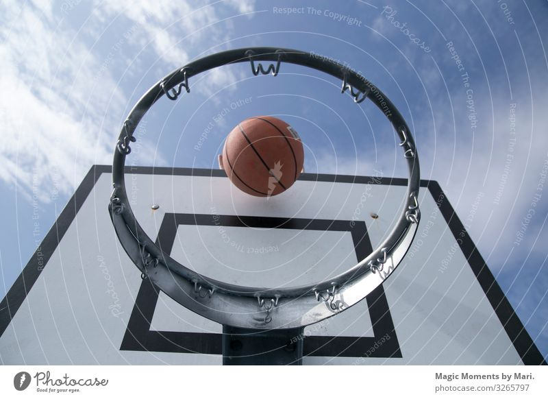 The ball and the basketball net Sports Ball Basketball middle sport Playing Colour photo