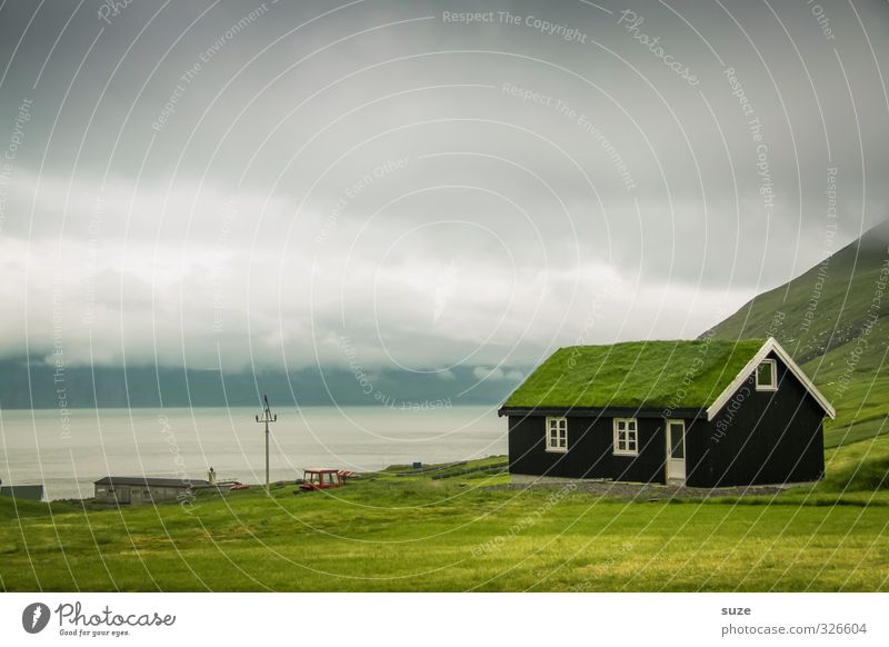 eco-hut Living or residing Flat (apartment) House (Residential Structure) Environment Nature Sky Clouds Grass Meadow Hut Window Roof Growth Cold Funny