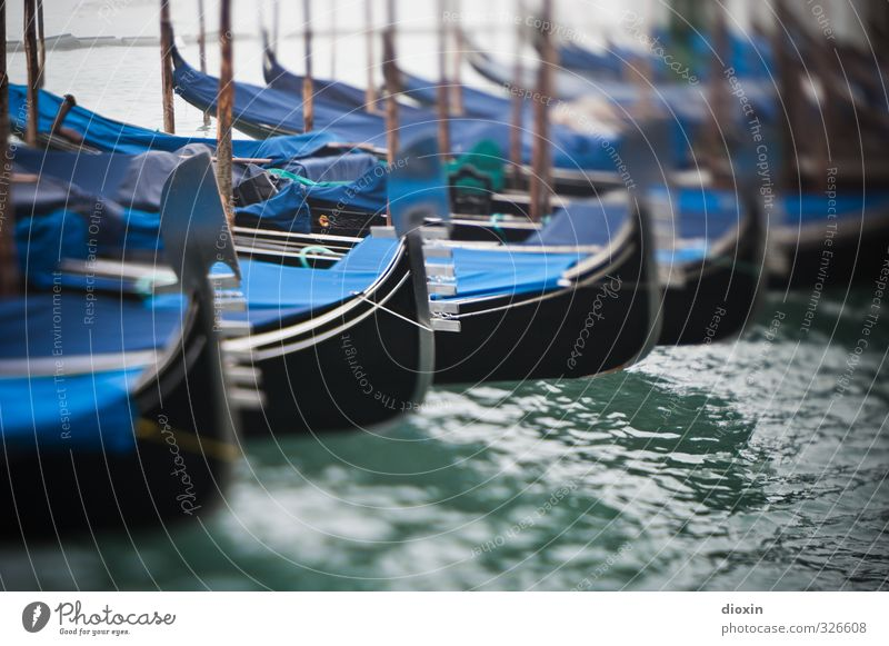 winter break Vacation & Travel Tourism City trip Ocean Winter Water Lagoon Lagoon Islands Venice Italy Europe Navigation Boating trip Rowboat Harbour