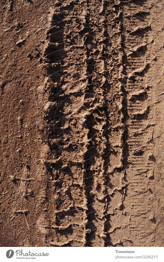 Brown - tire marks on dirt road Colour Earth Tracks Skid marks Profile Dry Imprint Tire tread Deserted Lanes & trails Light Shadow