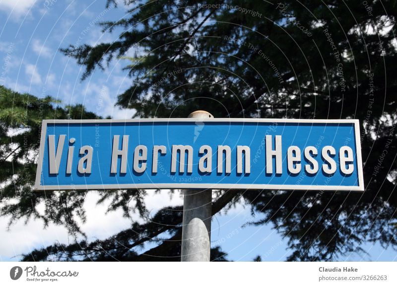 Via Hermmann Hesse Metal Sign Signs and labeling Signage Warning sign Famousness Sharp-edged Blue Gray Silver Via Hermann Hesse Montagnola writing
