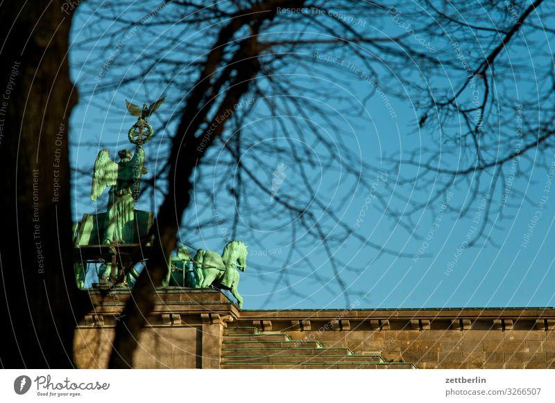 quadriga Berlin Brandenburg Gate City Capital city Downtown Portal Town Tourism Landmark Quadriga Deserted Copy Space Tree Tree trunk Branch Twig Autumn Winter