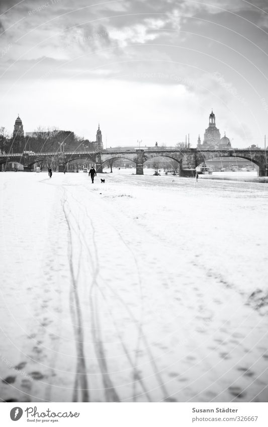 Sunday stroll Landscape Clouds Winter Beautiful weather Snowfall Meadow Old town Skyline Church Places Serene Bridge Dresden Frauenkirche Tracks Snow track