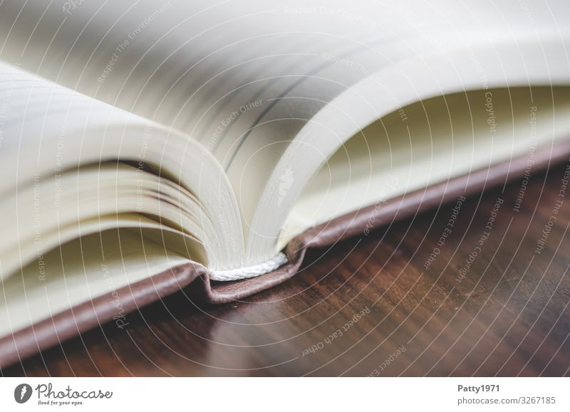open calendar Book Calendar Line Business Communicate Testing & Control Date Subdued colour Close-up Detail Macro (Extreme close-up) Deserted Copy Space top