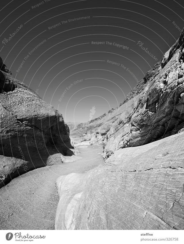 twists Rock Death valley Nationalpark USA Nevada Exceptional Wiggly line Black & white photo Exterior shot Structures and shapes Deserted