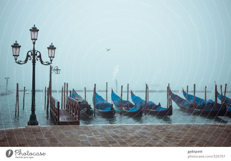 Venice | Theme Day Fog Rain Italy Town Port City Downtown Old town Marketplace Tourist Attraction Means of transport Gondola (Boat) Blue Longing Wanderlust