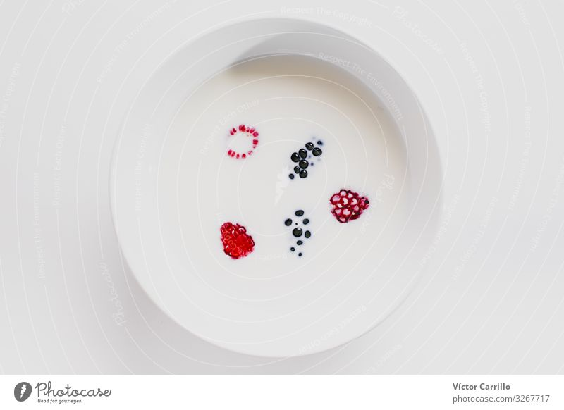 Milk and berries in a clean composition Nutrition Eating Breakfast Authentic Simple Interior shot Studio shot Close-up Deserted Copy Space left
