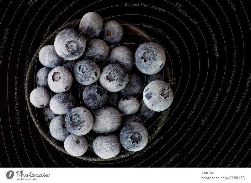 frozen blueberries in black skin in front of black background Blueberry Organic produce Vegetarian diet Diet Vegan diet Bowl Healthy Fresh Cold Delicious Round