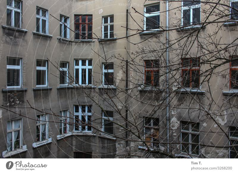 Backyard Berlin Prenzlauer Berg Town Capital city Downtown Old town Deserted House (Residential Structure) Wall (barrier) Wall (building) Window