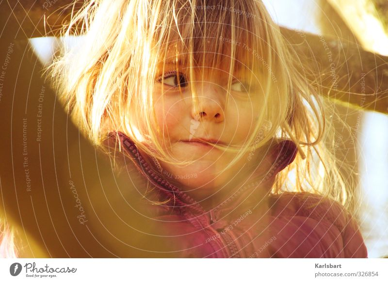Human being Child Nature Tree Girl Joy Environment Feminine Autumn Movement Playing Head Healthy Health care Blonde Infancy