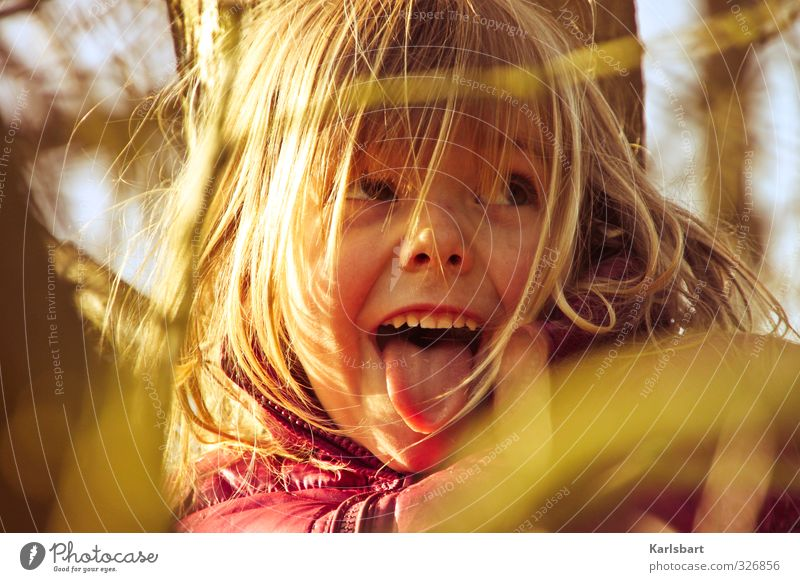 Human being Child Nature Tree Girl Joy Environment Autumn Movement Playing Head Healthy Infancy Beautiful weather Study Education