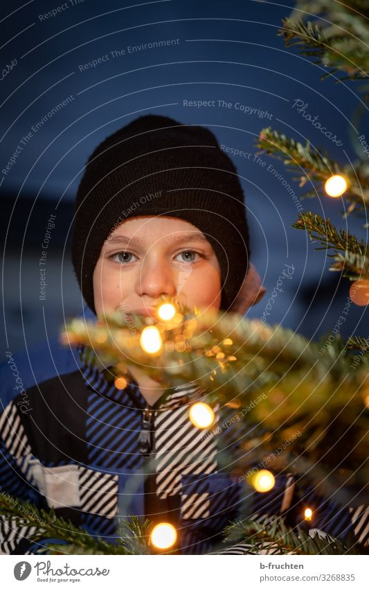 Child behind Christmas tree with chain of lights Lifestyle Shopping Elegant Style Leisure and hobbies Feasts & Celebrations Christmas & Advent Face 1