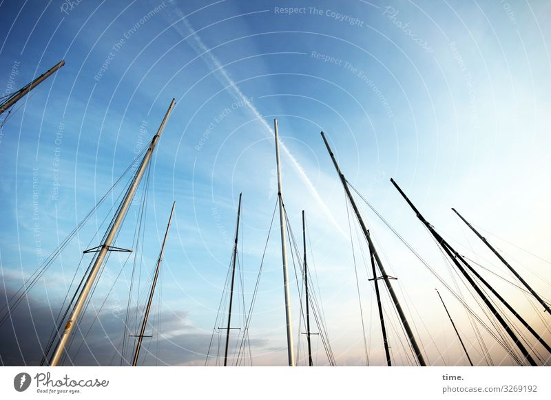 Evening in the harbour Sky Clouds Beautiful weather Navigation Sailboat Sailing ship Harbour Mast Rope Together Maritime Sympathy Patient Calm Life Esthetic