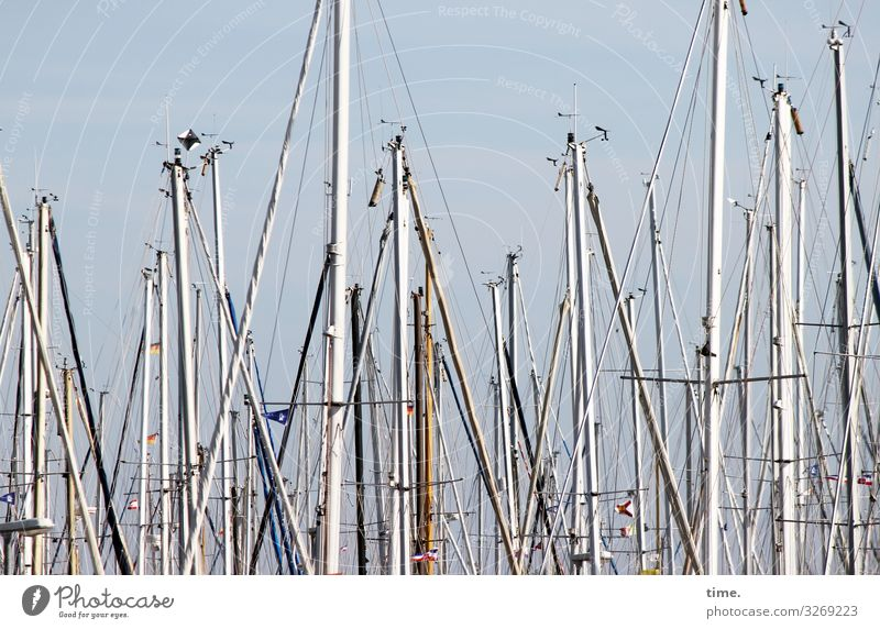 Rope teams (XV) Navigation Sailboat Sailing ship Harbour Yacht harbour Mast Dew Rigging Wood Metal Together Life Endurance Unwavering Surprise Movement