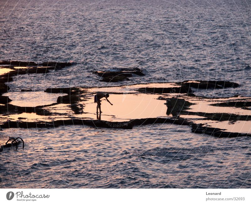 mirroring Ocean Waves Light Sunset Human being Water Rock reflection coast sea sun woman