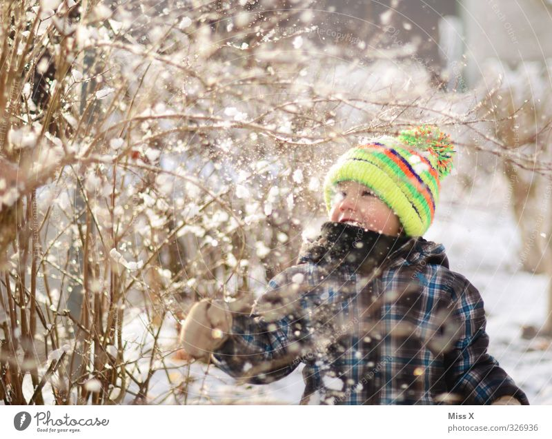 Human being Child Joy Winter Cold Snow Emotions Playing Laughter Snowfall Moody Infancy Smiling Cute Branch Toddler