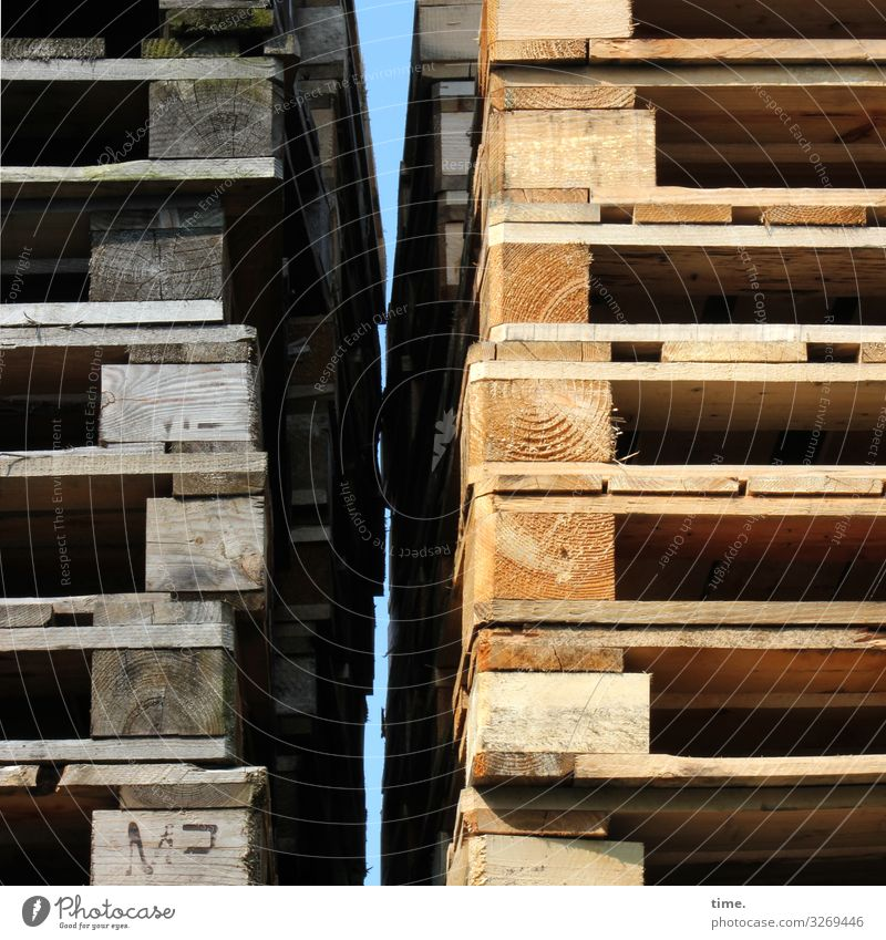 confidence man Trashy structure Wood Brown daylight Second-hand Sunlight Shadow New Old forehead wood pallet wooden pallet Stack lines stacked Tall