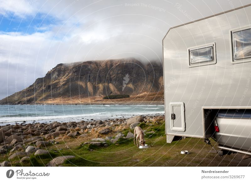 Camping on the Lofoten Islands Adventure Freedom Ocean Nature Landscape Elements Water Clouds Beautiful weather Meadow Rock Mountain Coast Fjord Vehicle