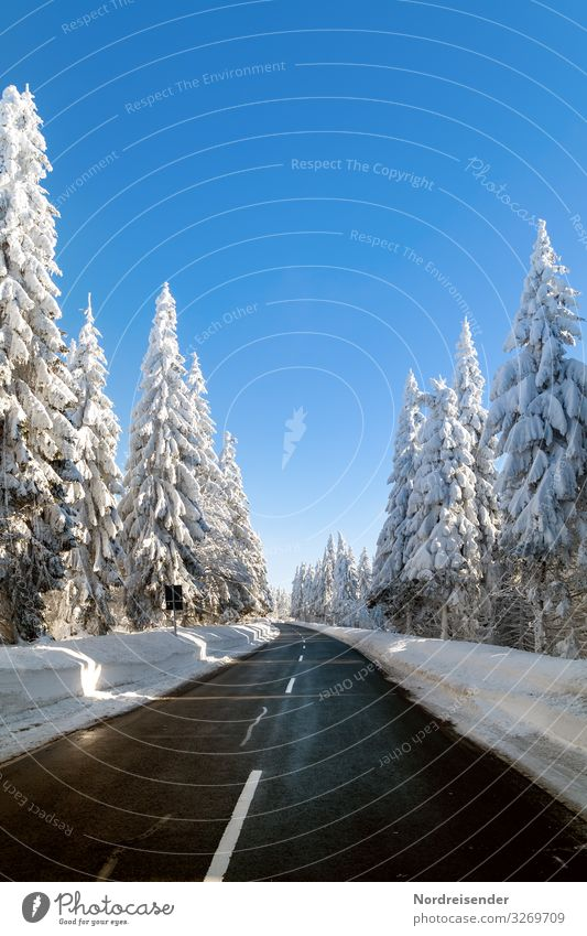 Road through the snowy Thuringian Forest Vacation & Travel Tourism Trip Winter Snow Winter vacation Nature Landscape Cloudless sky Beautiful weather Ice Frost