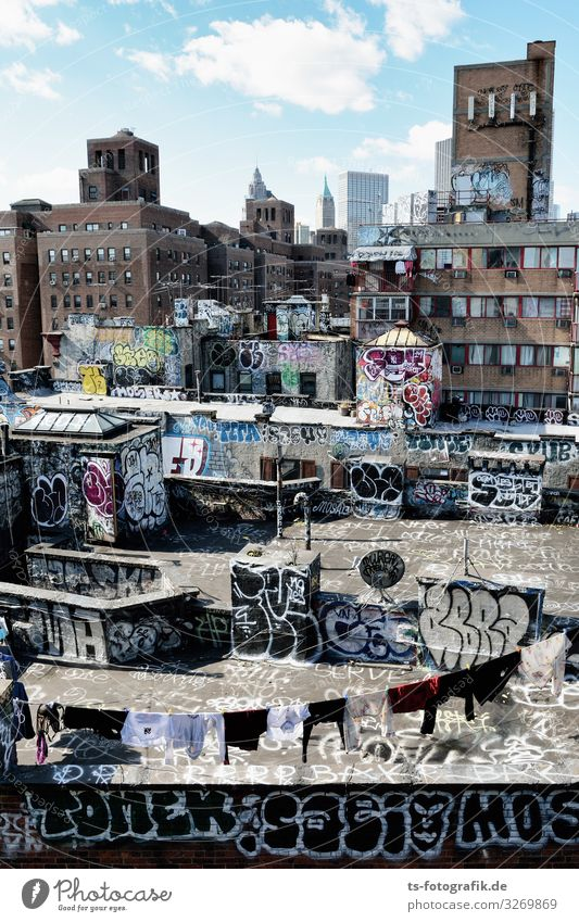 The back of Manhattan Art Architecture Culture Youth culture Subculture New York City USA Downtown Skyline House (Residential Structure) Ruin Manmade structures