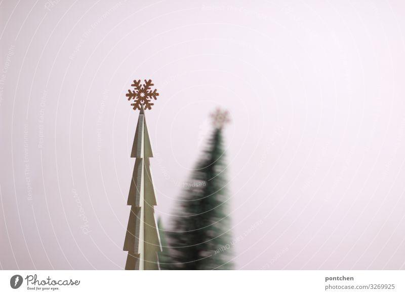 Christmas & Advent Green Feasts & Celebrations Living or residing Decoration Gold Glittering Star (Symbol) Sign Tilt Kitsch Toys Christmas tree Replication