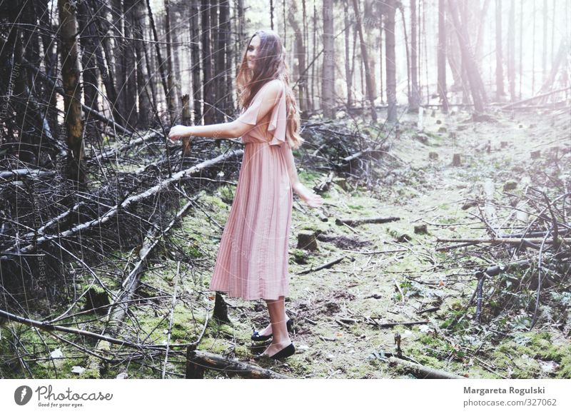 Nature Beautiful Tree Eroticism Forest Environment Lifestyle Feminine Laughter Happy Hair and hairstyles Fashion Wild Dream Glittering Elegant